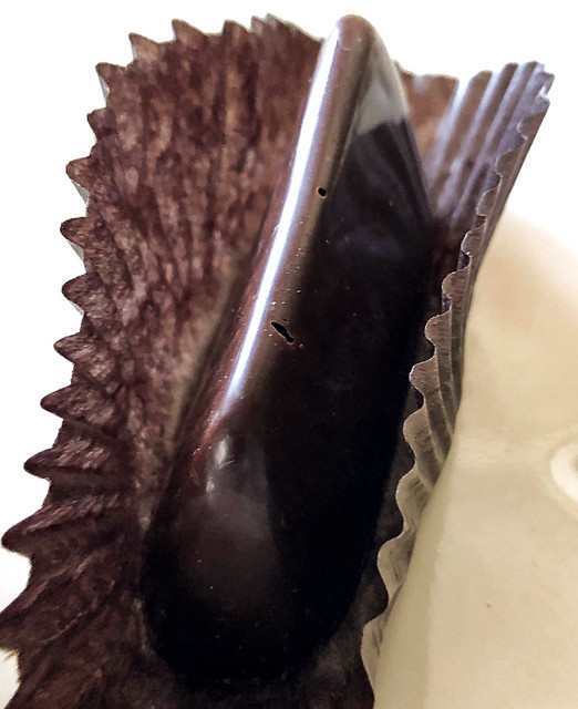 Studying Chocolate: SOMA Chocolatemaker