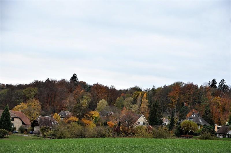 Feldbrunnen Village 08.11 (2)