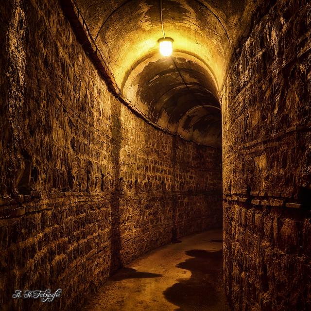 Going underground, Olympus E-M1, OLYMPUS M.12-50mm F3.5-6.3