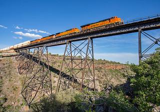 ZWSPPHX7 at Big Hell Canyon Drake, AZ