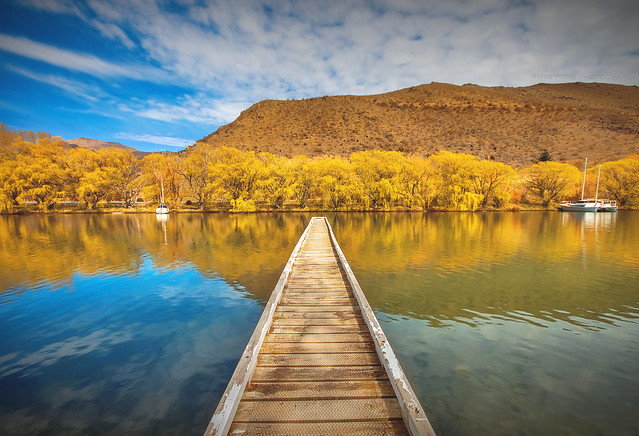 Reflect The Gold || SOUTH ISLAND || NEW ZEALAND