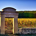 Latricières Chambertin 01 by mg photographe