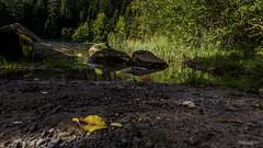 2018 09 29 Lac de la Maix-752397 - Photo of Grandfontaine