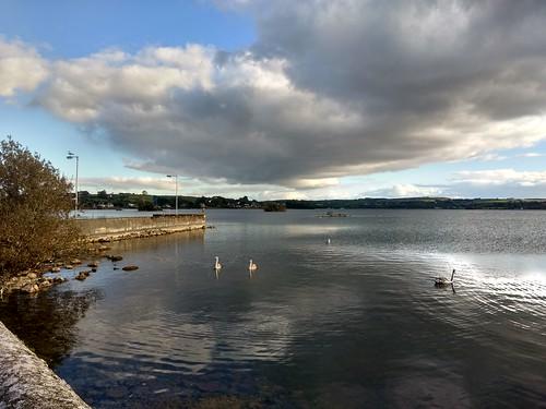Loughrea lake October  2018 Autumn light.