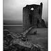 Flint Castle, Wales (mono)
