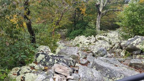 Torry Ridge Sherando Lake Recreational Arae