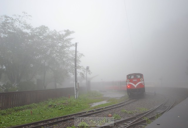 alishan forest tour alishan forest railway
