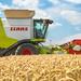 Wheat Harvest | CLAAS