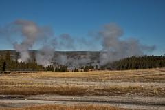 Upper Geyser Basin - Yellowstone National Park
