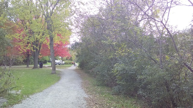 Down the path #toronto #homesmithpark #humberriver #fall #autumn #path #latergram