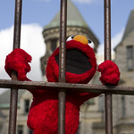 Shawshank Elmo is innocent!