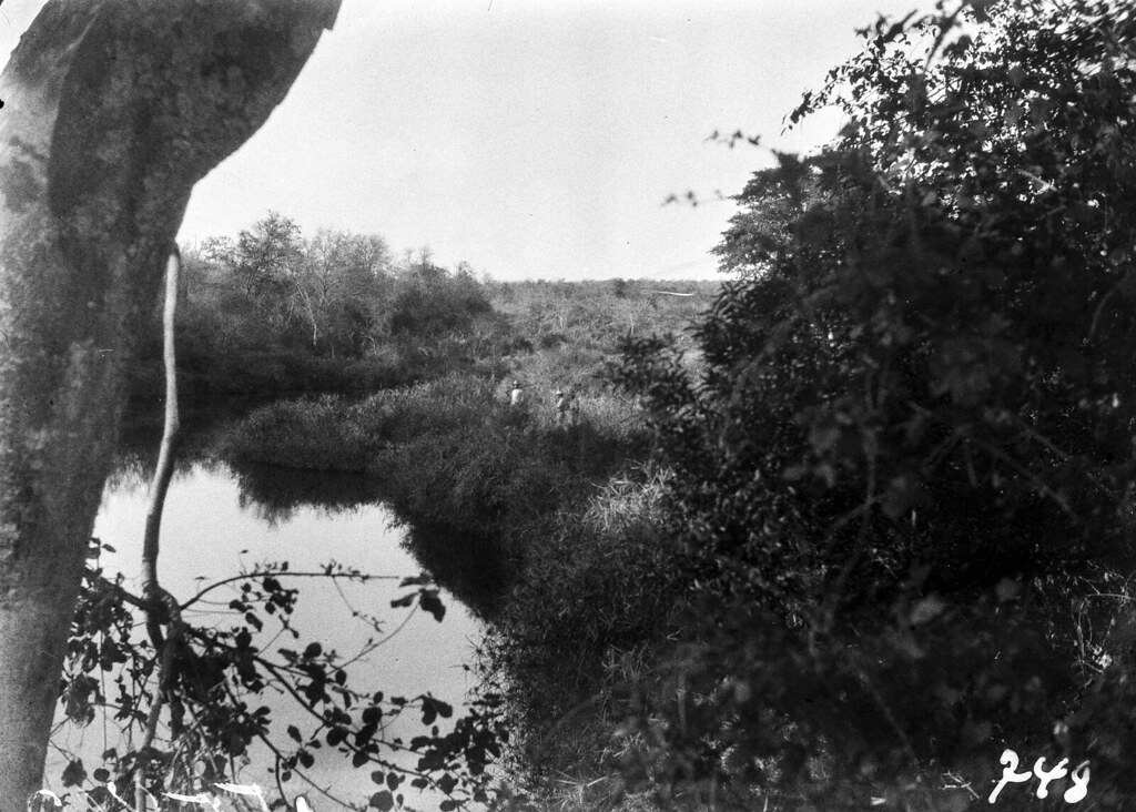 Лимпомпо. Речной пейзаж с растительностью