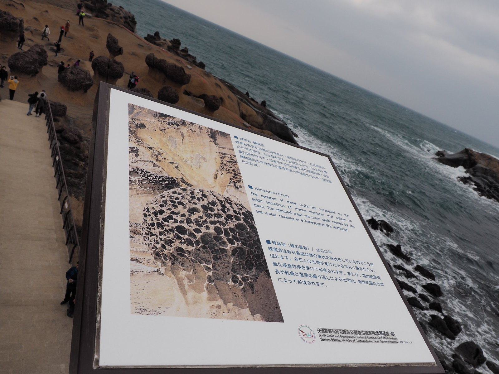 Explanation of the honeycomb-like shape on the rocks at Yehliu Geopark