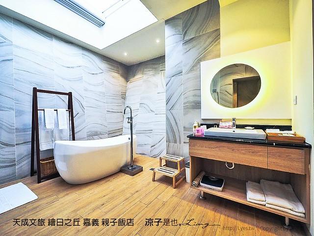 天成文旅 繪日之丘 嘉義 親子飯店 12