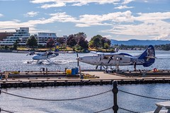 The Business is Good at Harbour Air