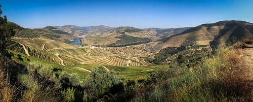 WOW @ Douro
