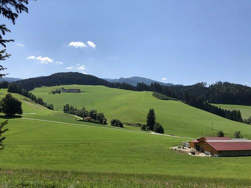 2018.07.19 021 Wipfelwanderweg Rachau
