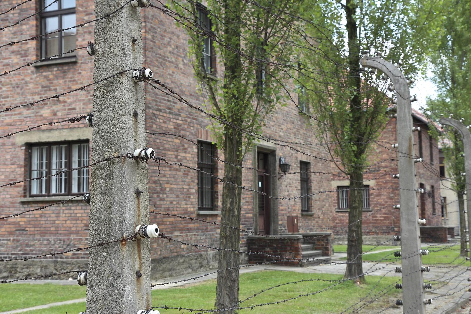 Auschwitz-Birkenau tuhoamisleiri