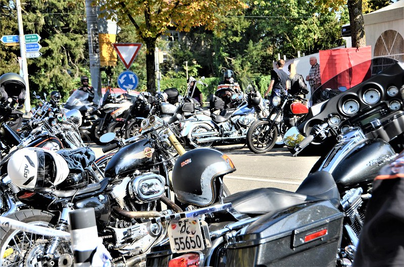 Harley Davidson HESO Tag 30.09 (3)