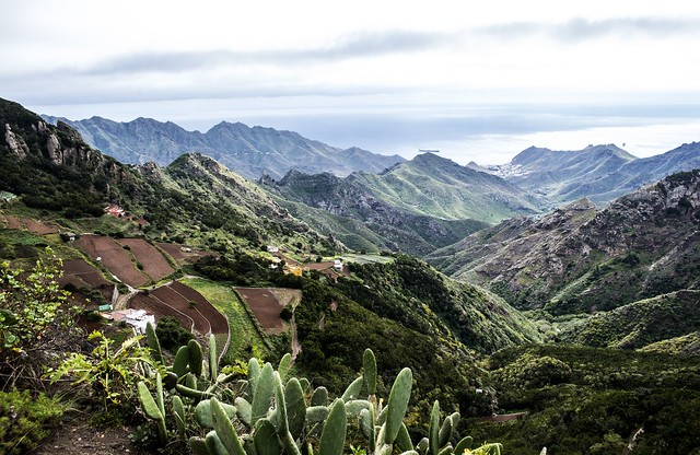 Parque de Anaga (Tenerife)
