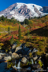 Mount Rainier Above Fall Colors