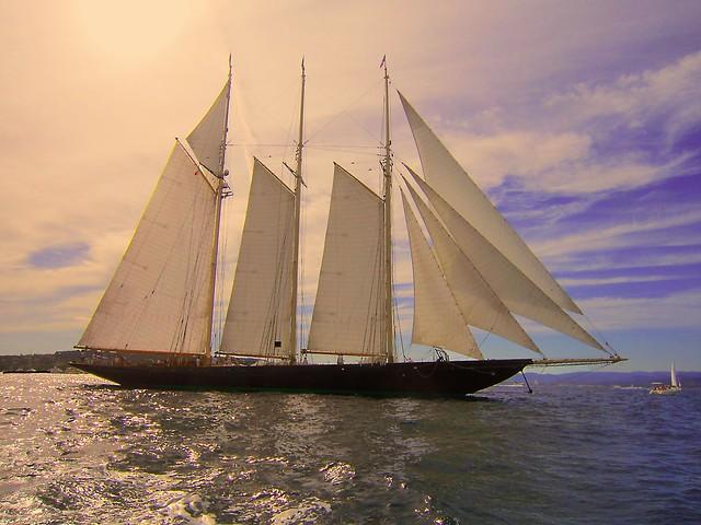 certains voiliers font plus, Canon IXUS 210