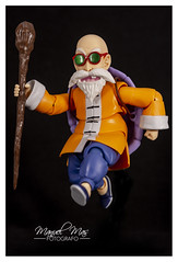 Review 121 - Muten Roshi [S.H.Figuarts] 30169051227_ee174535f0_m
