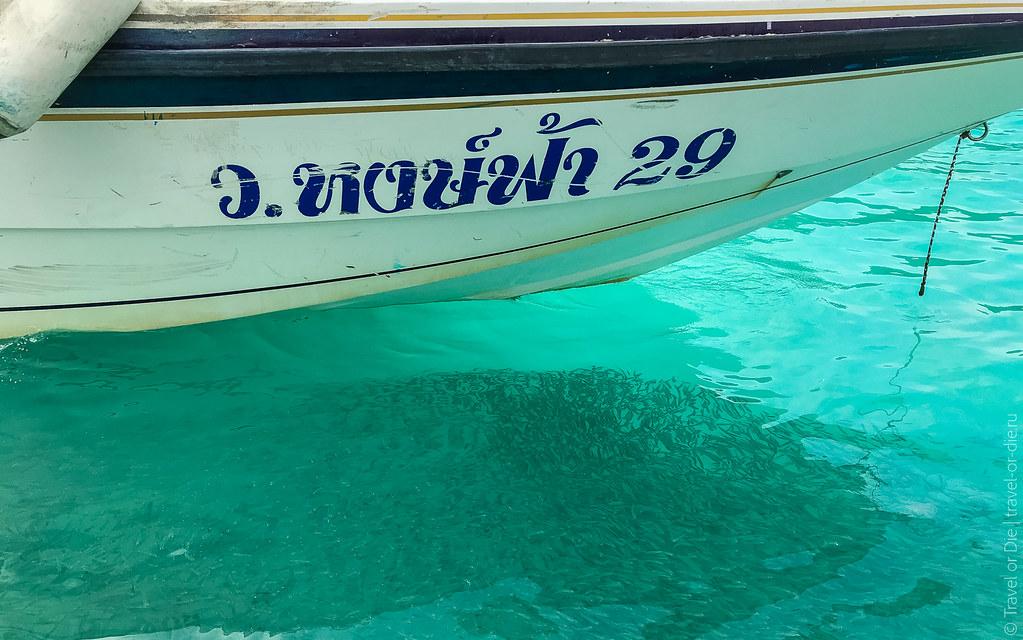 симиланские-острова-similan-islands-таиланд-7832