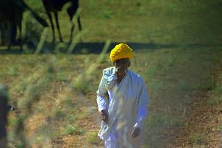 Jodhpur Scenes