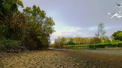 Les marais sont à sec - Photo of Vendays-Montalivet