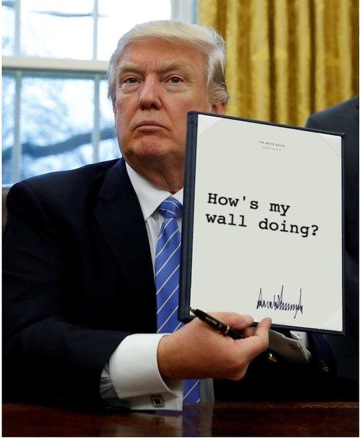Trump_howsmywall
