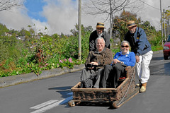 Toboggan ride