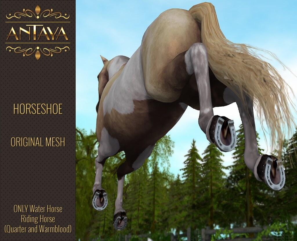 :: ANTAYA :: WHRH Horseshoe