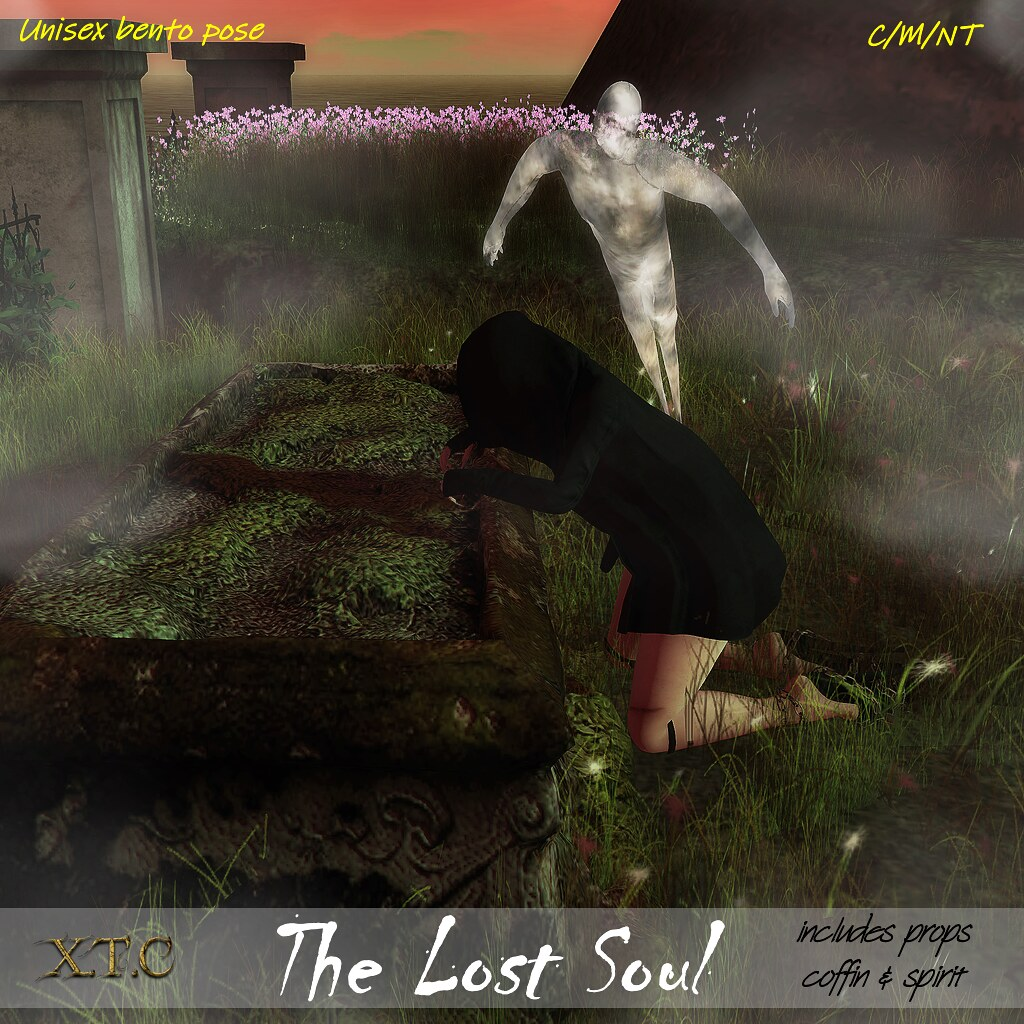 .The Lost Soul. THE MAD CIRCUS 4