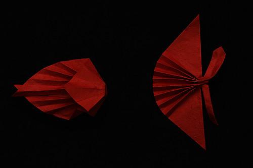 Origami Fish Object (Hojyo Takashi)