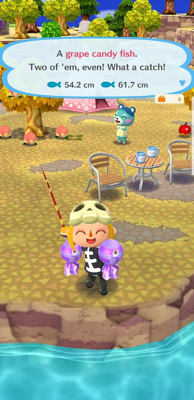 Screenshot_20181024-110809_Pocket Camp