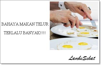 Makan Telur Terlalu Banyak Berbahayakah?