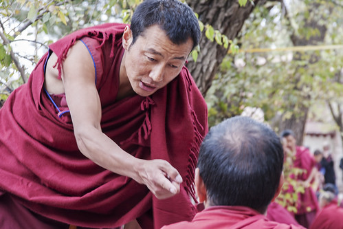 Monks debating #4