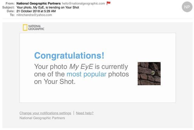 Your photo My EyE is trending on Your Shot