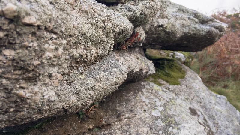 Mardon Down Rocks (south)