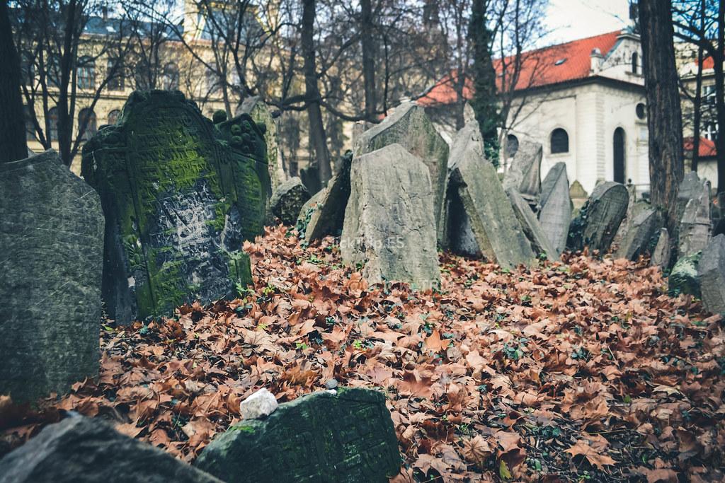 · Más de 12.000 lápidas alberga el antiguo cementerio judío · Josefov ·