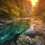 Vintgar Gorge (Bled Gorge) Slovenia