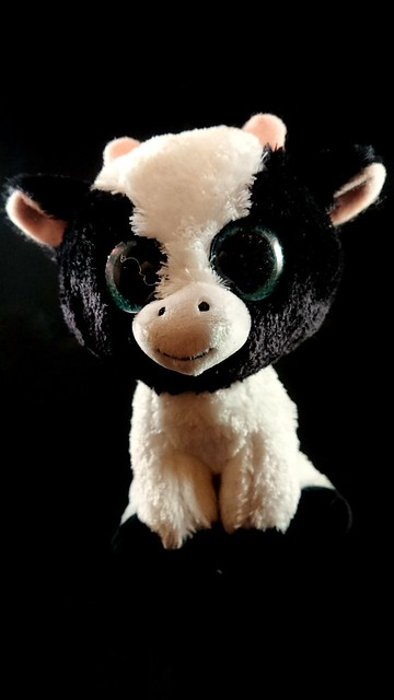 What does the cow say? The cow says... MOO!!
