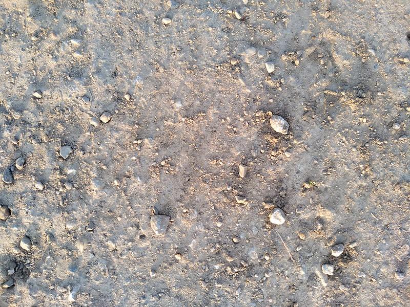 Ground texture #1