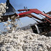 Government sets objective of 15mn bales of cotton production for 2018-19