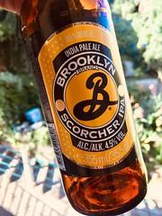 Brooklyn scorcher IPA
