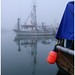 Nothing Can Beat Natural Light - Steveston XH4053e by Harris Hui (in search of light)