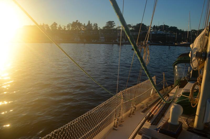 Sun Down DolphinII
