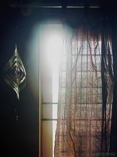 Window   Anita