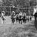 Foxfield fall races